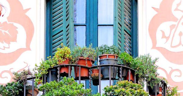Балкон в виде ракушки в стиле модерн растения на фасаде pint.