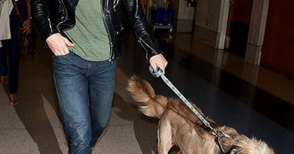 ryan gosling. a dog lover.
