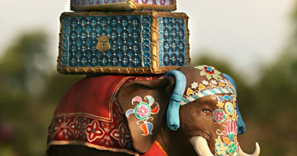 indian elephant cake