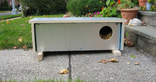 Ashot S Insulated Feral Cat Shelter Cat Shelter Feral Cat Shelter Shelter