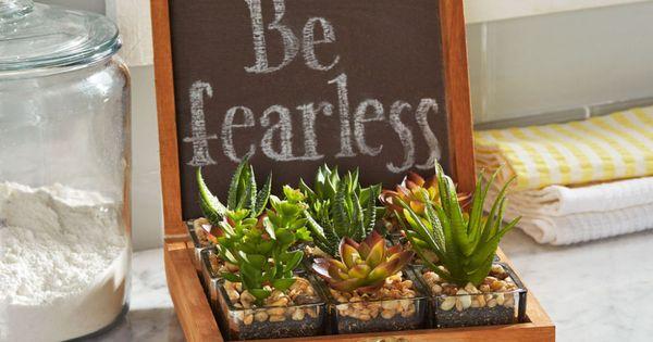 Create A Calming Tabletop Oasis With This Inspiring Diy Succulent Garden No Green Thumb