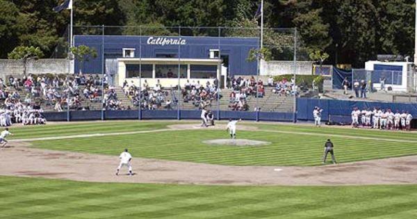 Evans Diamond Calbaseball Gobears Bearterritory California Golden Bears College Baseball Golden Bears