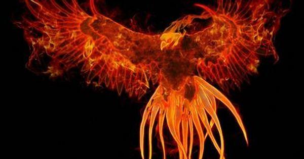 悪魔辞典 邪神 悪神 堕天使のイラスト画像コレクション Naver まとめ Phoenix Wallpaper Phoenix Bird Phoenix Images
