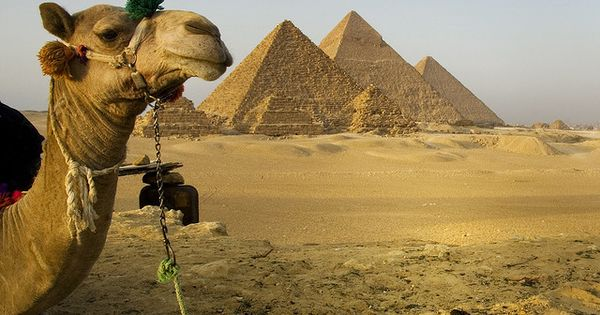 Giza Pyramids - Cairo, Egypt is the largest city on the African