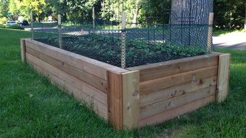 Rabbit Proof Raised Beds Garden Pinterest Raised