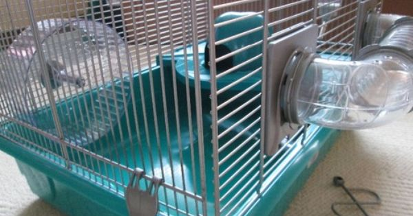 Pets At Home Medium Hamster Cage Turquoise Pick And Mix Ebay Hamster Cage Hamster Animal House