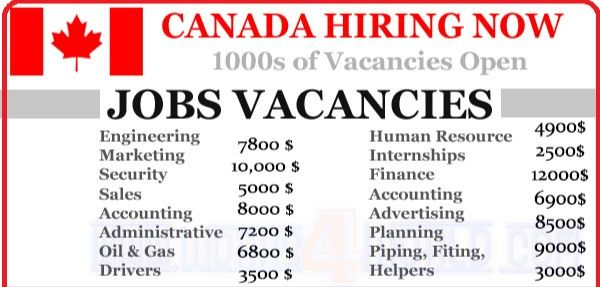 Jobs Required In Canada 2020 Job Job Opening Security Finance