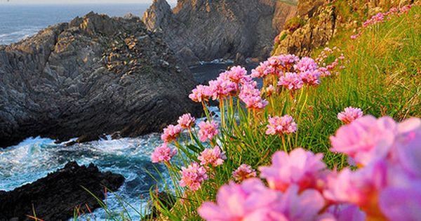 Coastal Beauty, Donegal, Ireland photo via molly - Explore the World with