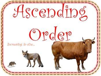 Ascending Order And Descending Order Math Posters For Your Math Word Wall Math Poster Math Words Math Word Walls