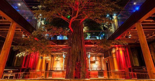 The 16 Best New Restaurants In Los Angeles Los Angeles Restaurants Downtown La Restaurants Manhattan Beach California