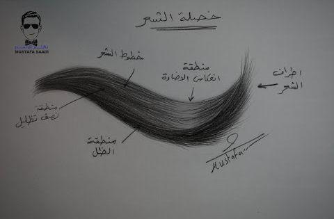 كورس تعلم رسم الشعر بالرصاص للمبتدئين Youtube How To Draw Hair Hair Styles Step By Step Hairstyles