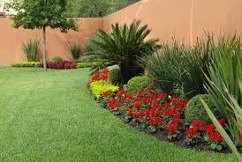 Resultado De Imagen Para Jardines Modernos Con Palmas Jardines Jardines Modernos Paisajismo Jardines