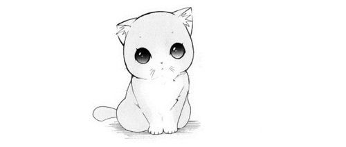 Manga Kitten Cute Anime Cat Anime Kitten Manga Cat