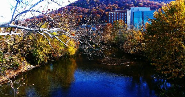 Roanoke River And View Of Carilion Roanoke Memorial