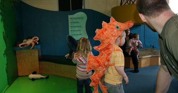 orange seahorse costume | Little Mermaid Jr. ideas ...