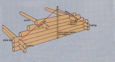 Building A Log Cabin With Logs For Trusses And Roof Framing How To Build A Log Cabin Roof Framing Log Cabin