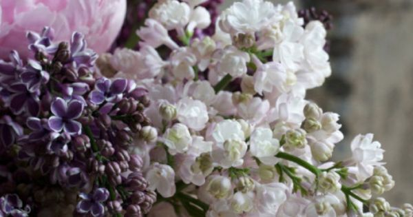 Wedding Color Scheme: Florals: lilacs & peonies - imagine the scent