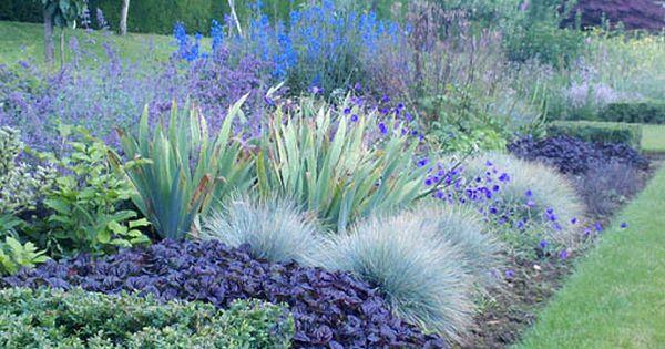 Come On Ajuga Black Scallop Festuca Glauca Geranium Orion Delphinium Image Penshurst Place Cory Furness Plants Dream Garden Gorgeous Gardens
