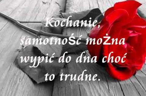 Tomasz Zoltko Kochaj Mnie I Dotykaj Tekst