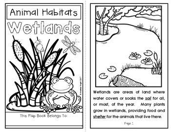 Animal Habitats Wetlands A Flap Book Project For Grades 1 3