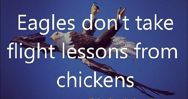 """Famous Quotes About Chickens: """"Eagles Don't Take Flight Lessons From Chickens"""""""