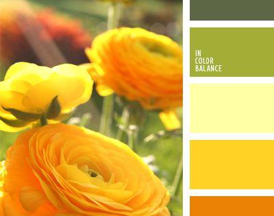 warme gelb und gr nt ne eignen sich gut f r k chen schlafzimmer und wohnzimmer diese. Black Bedroom Furniture Sets. Home Design Ideas