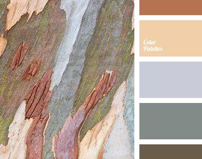 bark color, bog color, brown, design color selection, gray ...