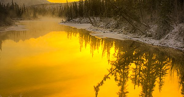Yellow - Primary colour: Sunrise in Jasper National Park, Alberta, Canada. Yellow