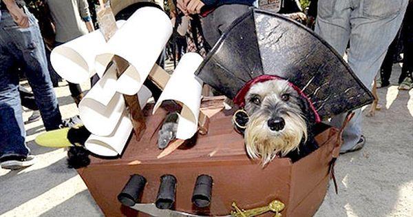 Tompkins Square Halloween Dog Parade On Oct 20 Bing Images Dog Parade Dog Halloween Dog Daycare