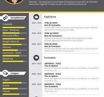 Cv Professionnel Gratuit Plus Plus Apprendreanglaisgratuit Cv Kreatif Desain Cv Riwayat Hidup