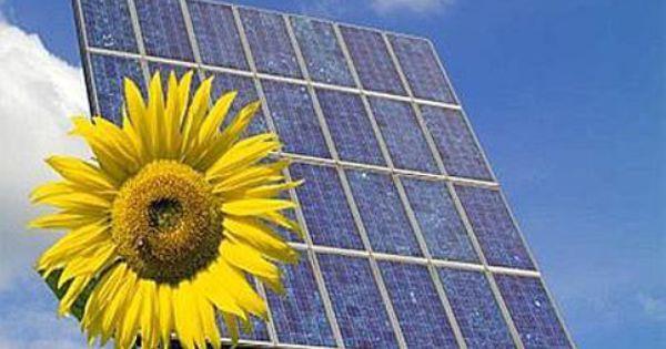 Funzionamento Pannelli Fotovoltaici Una Spiegazione Veloce Solar Panels Solar Solar Technology