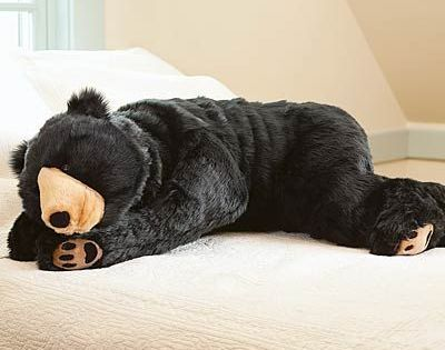 Black Bear Quot Bear Hug Quot Body Pillow Sicem Baylor In