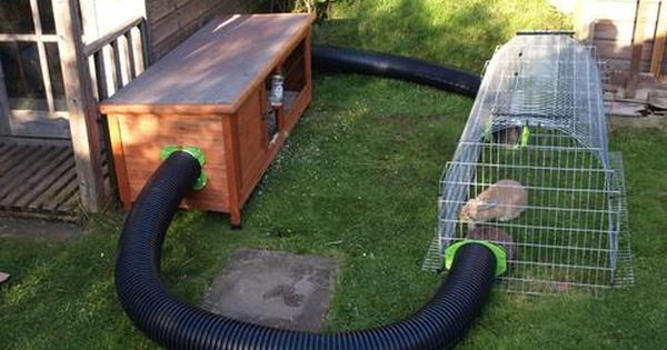 Our customers runaround rabbit and guinea pig runs for Amazing rabbit cages