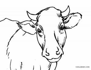 Dibujos De Vacas Para Colorear Paginas Para Imprimir Gratis Cool2bkids En 2020 Paginas Para Colorear De Animales Dibujos Paginas Para Colorear