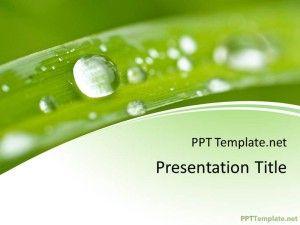 Plantilla Ppt De Naturaleza Gratis Ppt Template Organic Recipes Ppt