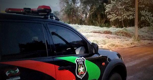 Apostila Policia Civil De Santa Catarina Pc Sc Agente De Policia