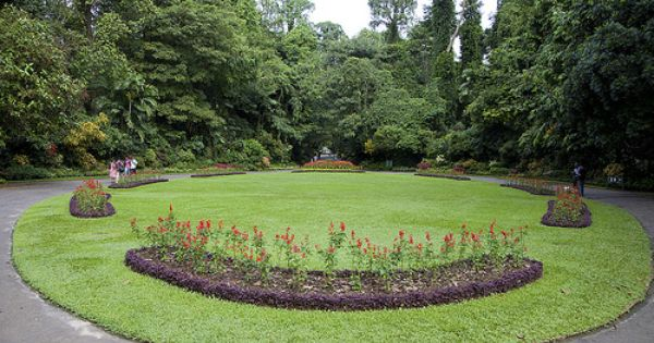 Peradeniya Botanical Gardens Kandy Sri Lanka Www Secretlanka Com Srilanka Kandy Peradeniya Botanicalgarden Avec Images