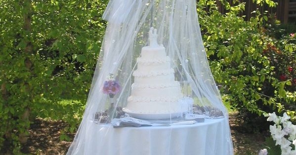 {diy Wedding Ideas} Protect Your Outdoor Wedding Cake.. Unless it melts because