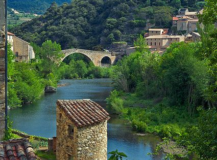 Languedoc-Roussillon ~ France. Most lush & beautiful place I have ever seen