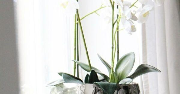 Wohnzimmer Dekoration Silber : Deko and Dekoration on Pinterest