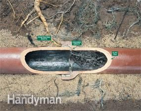 How To Stop Tree Roots From Plugging Sewer Lines Diy Plumbing