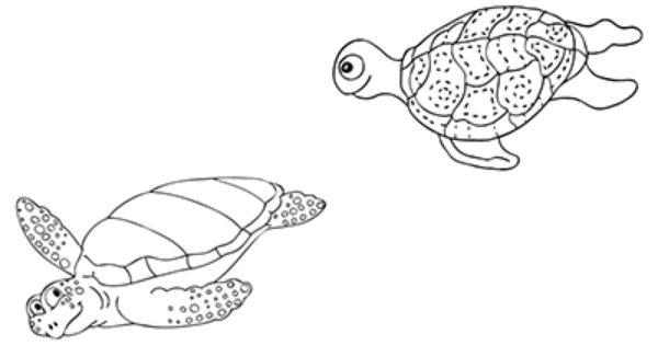 """marabu window color malvorlage """"schildkröten"""" http"""