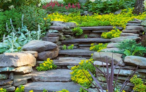Natural Stone Stairs,... In A Matured Garden Path,.. Beautiful Serenity,....