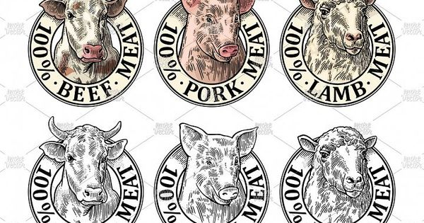 Download Cows Pig Sheep Head 100 Percent Beef Pork Lamb Meat 34017 Logos Design Bundles Engraving Illustration Cow Sheep
