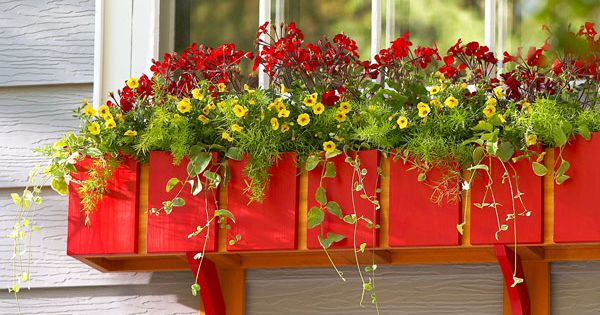 DIY Window Flower Box