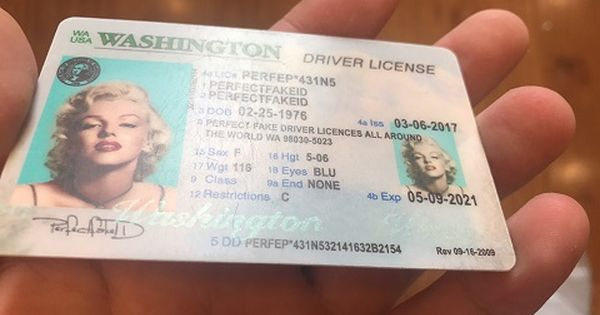 Id Driver S License Seattle Fake Novelty Template Quality Best Washington State Seattle Tacoma Dmv Portland Drivers License Doctors Note Licensing