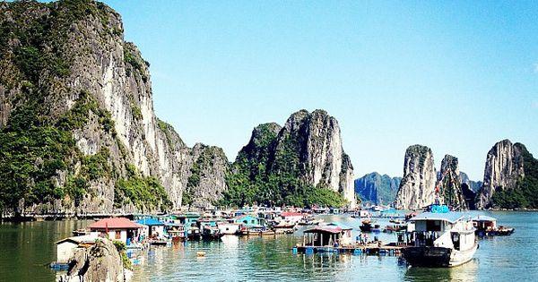 Xin chào - good morning Vietnam!