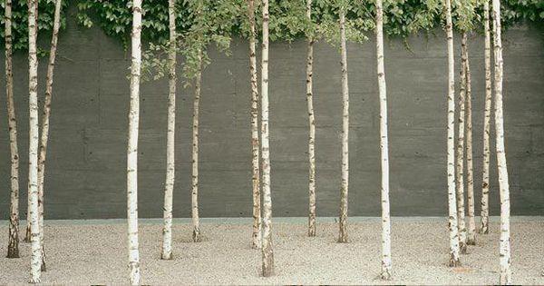 Ch basel novartis campus park architect gunther vogt for Vogt landscape architects
