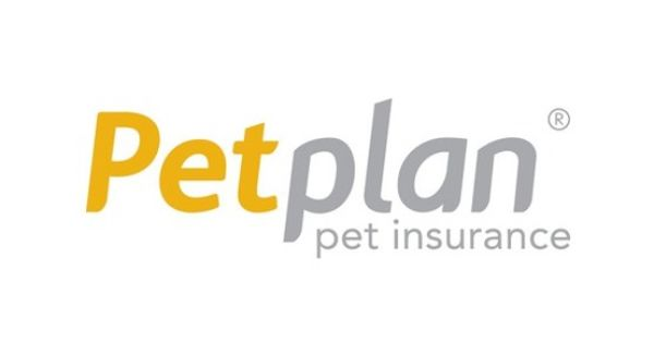 petplan insurance the o jays pets and natasha o keeffe