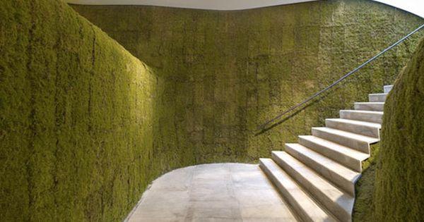 Vertical Moss Garden / mossacres.com
